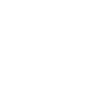 spinal manipulation icon