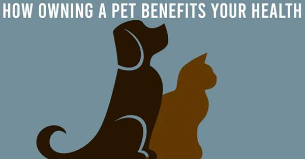 how owning a pet benefits your health