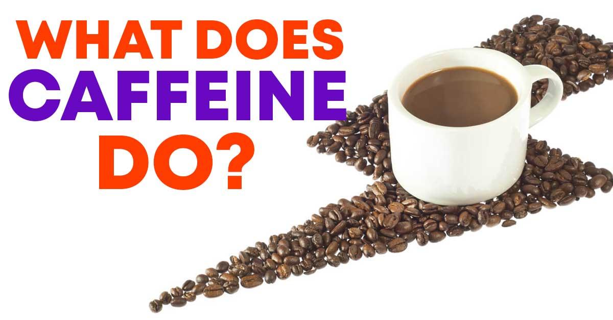 what does caffeine do