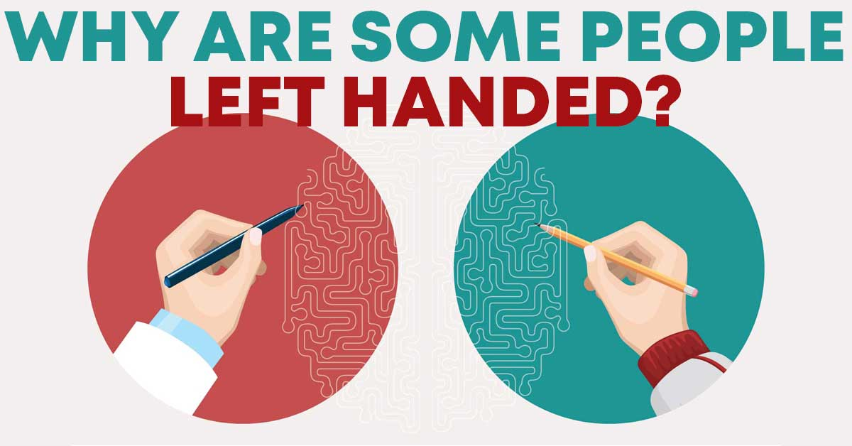 why are some people left handed